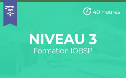 pst niveau 3 formation iobsp